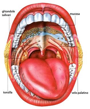 tumore-della-bocca